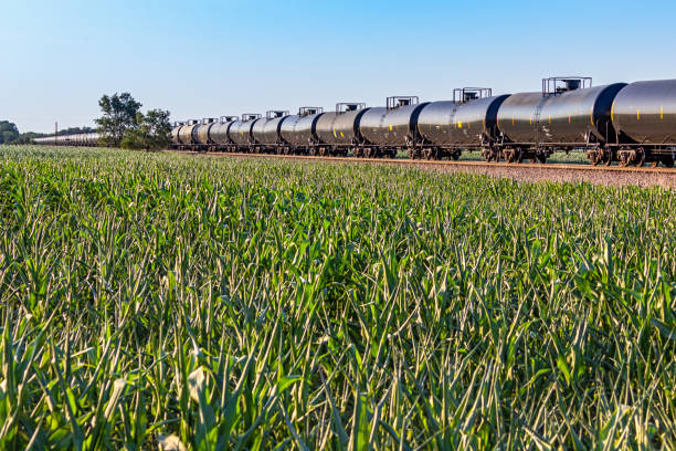 Long tank train with lush green corn field in foreground: diminishing perspective stock photo