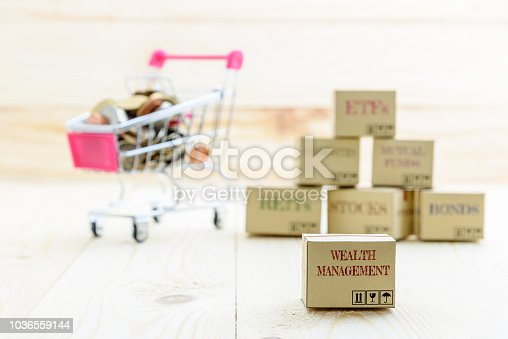 1155852718istockphoto Long term sustainable and wealth management with risk diversification concept : Box printed with financial instrument / investment products i.e stocks, ETFs, bonds, REITs and coins in a shopping cart. 1036559144