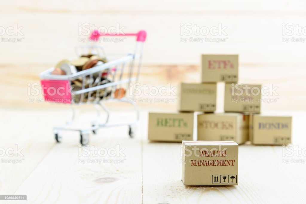 Long term sustainable and wealth management with risk diversification concept : Box printed with financial instrument / investment products i.e stocks, ETFs, bonds, REITs and coins in a shopping cart. stock photo
