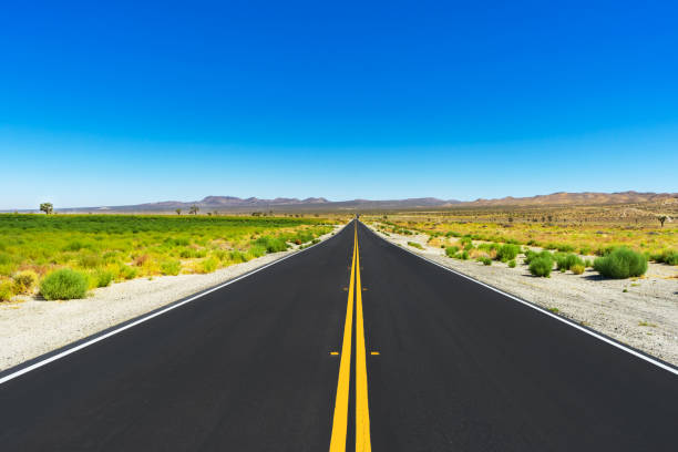 Long varnishing point road in the Mojave Desert stock photo