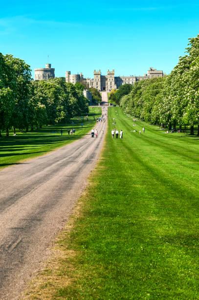 langen spaziergang von windsor castle park - dokumentation stock-fotos und bilder