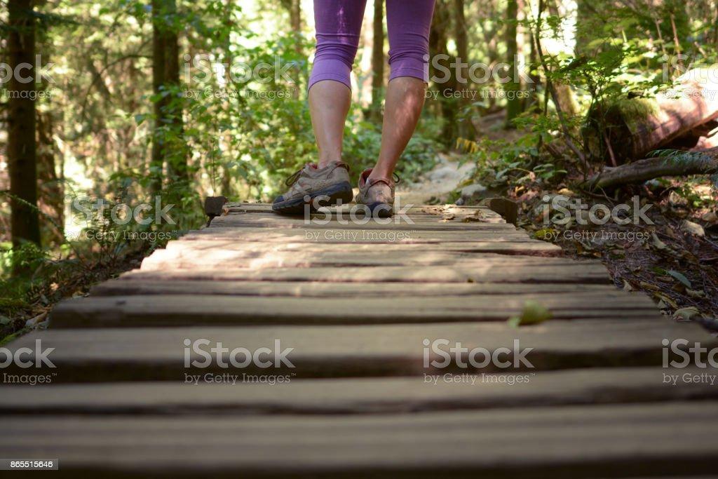long walks stock photo
