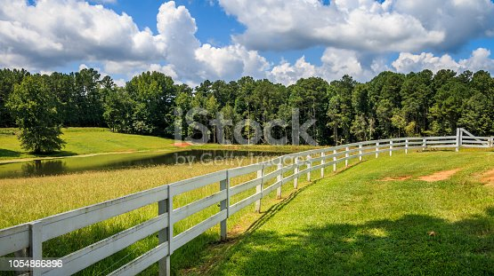 A large tree shades the front area of a white fence. There is a pasture, pond and trees in the background. Clouds and blue sky are in the background.