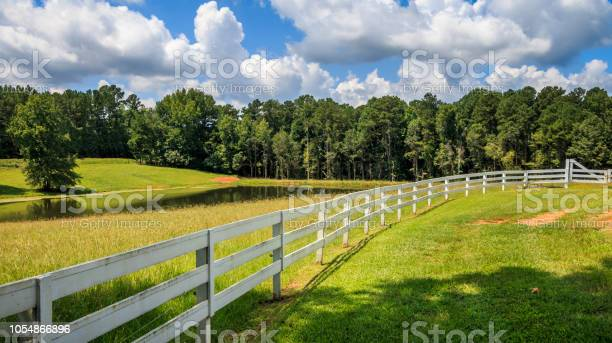 Photo of A Long White Fence