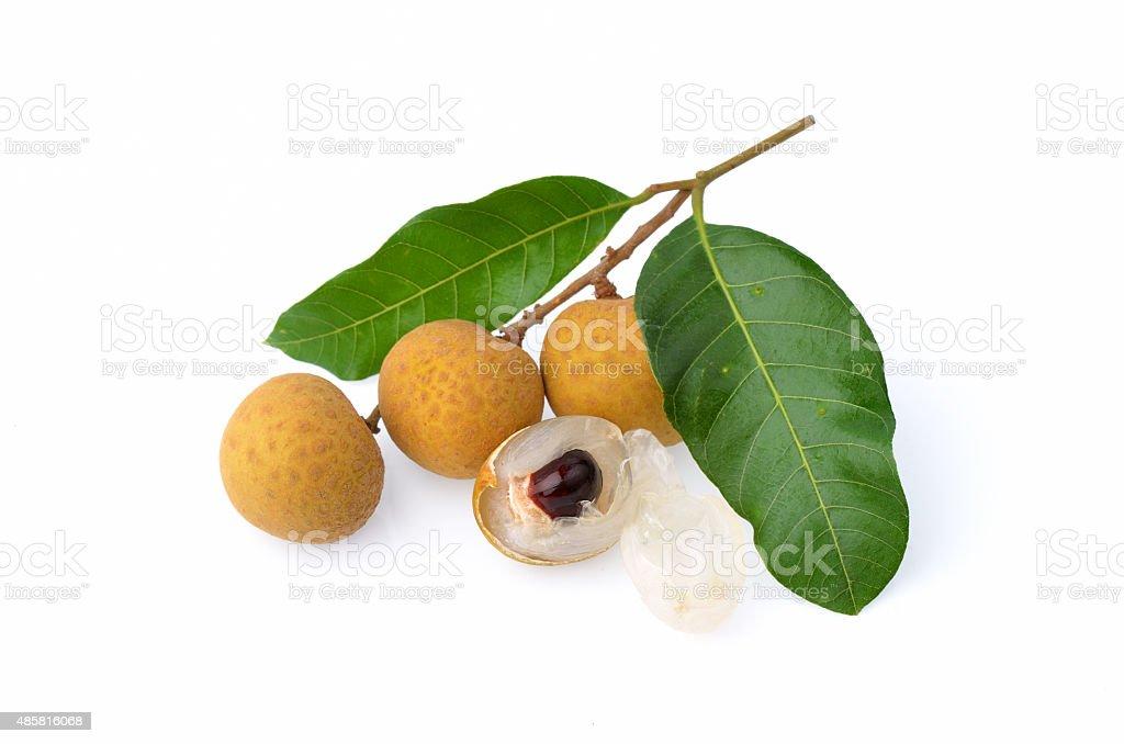 Longan fruit isolated on white background stock photo