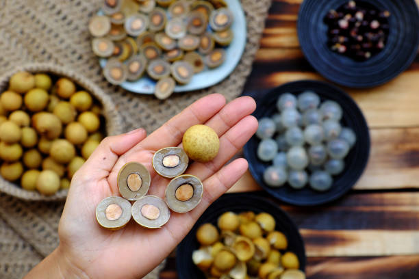 Longan fruits in people hand with black seed, yellow peel, cut in half background stock photo