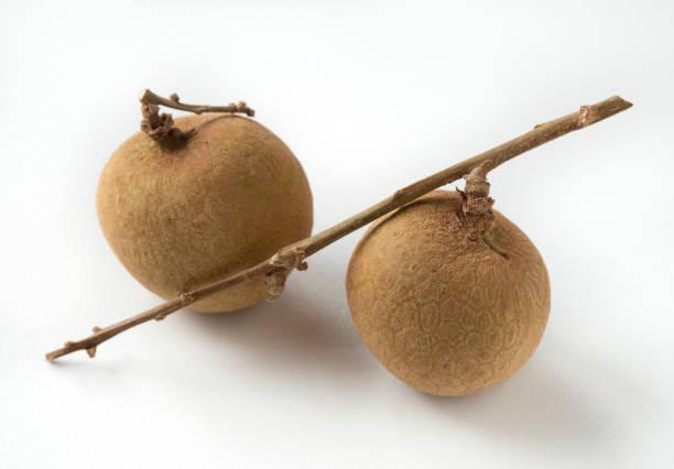 Longan auf einem Ast, frische tropische Früchte. – Foto