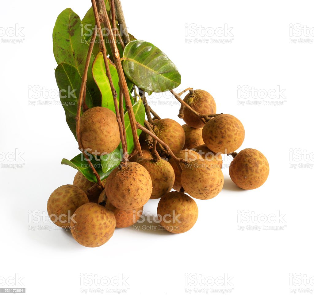Longan orchards - Tropical fruits in white background stock photo