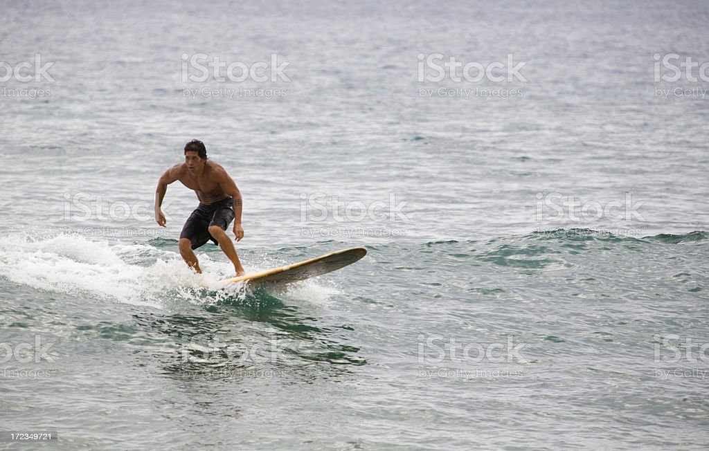 Longboarder On A Small Wave Day royalty-free stock photo