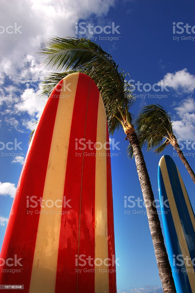 Longboards and Coconut Trees royalty-free stock photo