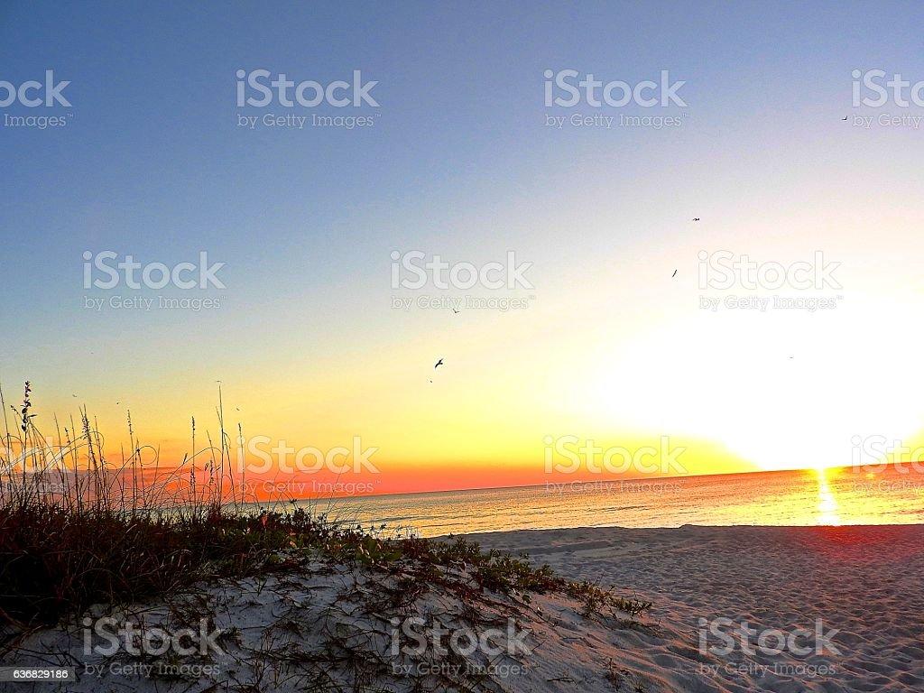 Longboat Key beach.... stock photo