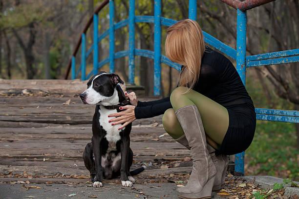 langhaar-blonde frau streicheln hund in hoher stiefel - hunde strumpfhosen stock-fotos und bilder