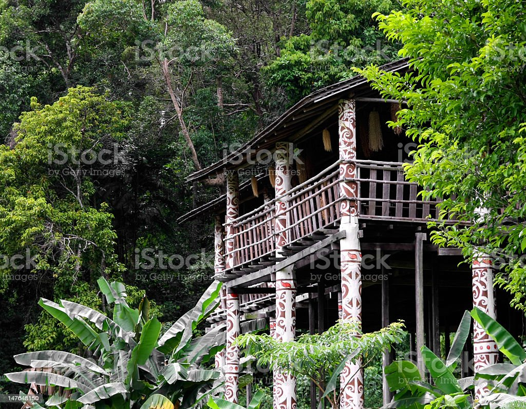 A longhouse in a jungle with trees surrounding it stock photo
