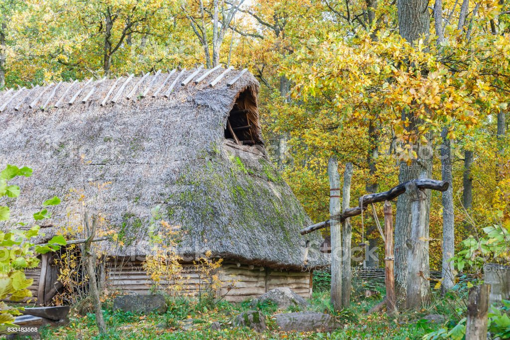 Longhouse in the forest with autumn colors stock photo