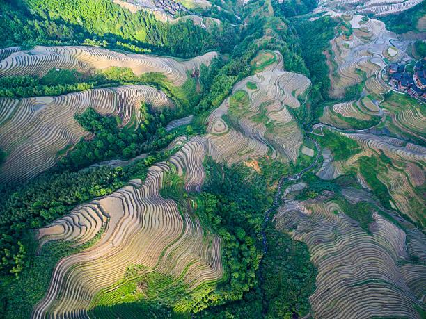 Longji Terraced Fields in Longsheng,Guilin,China stock photo