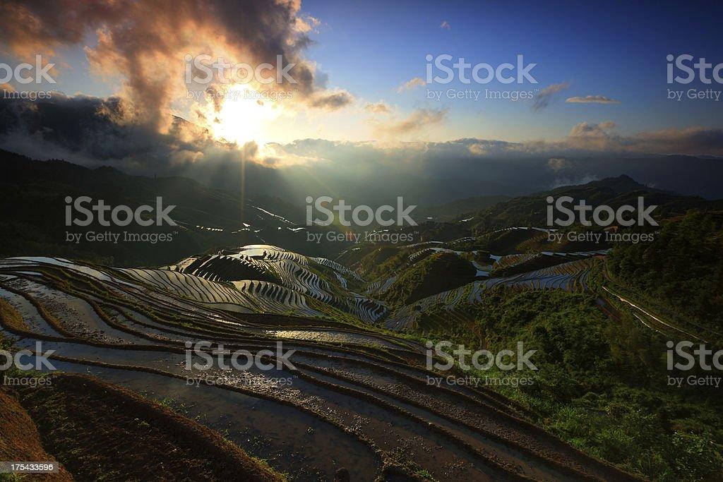 longji terraced fields,longsheng,guilin,china stock photo