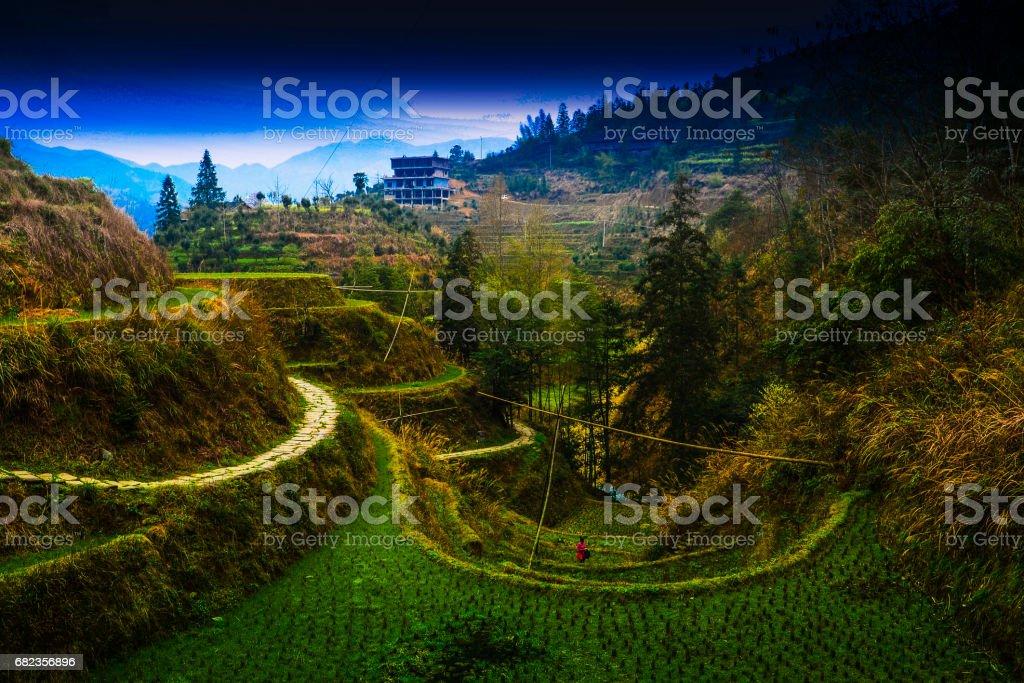 Longshen (Longji) Rice Terraces royalty free stockfoto