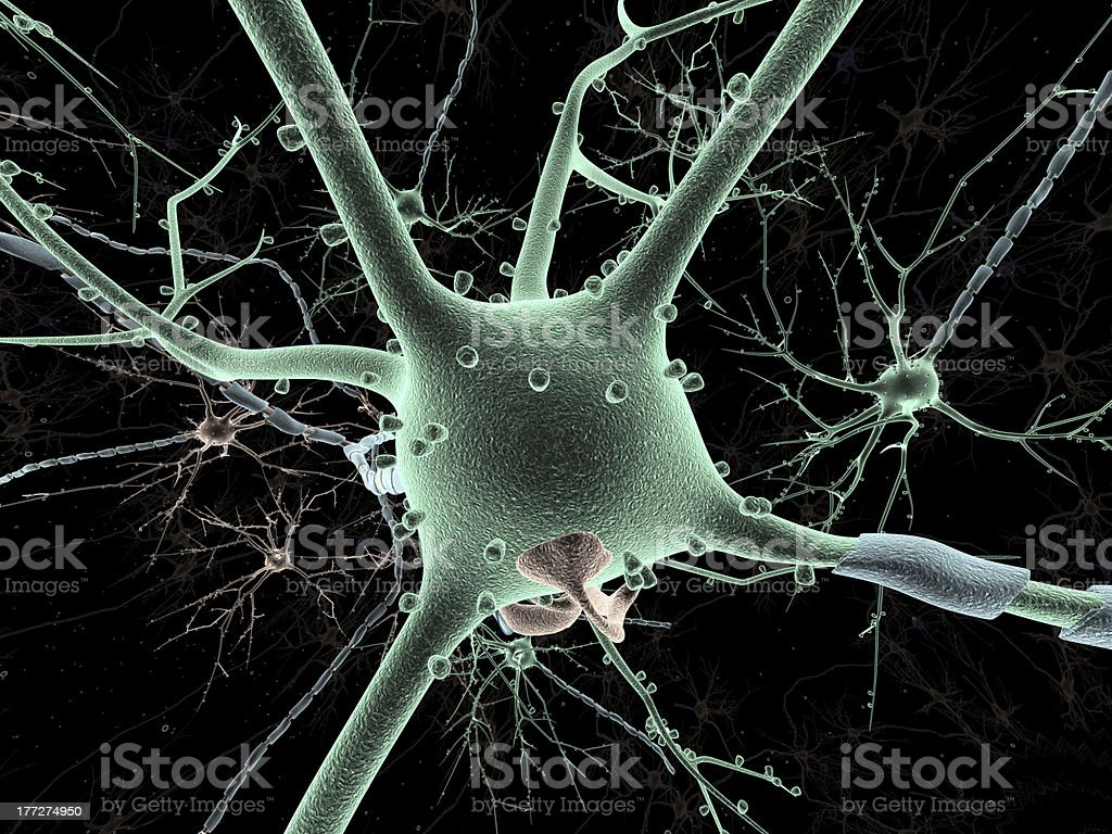 Long-shot of a Neuron royalty-free stock photo
