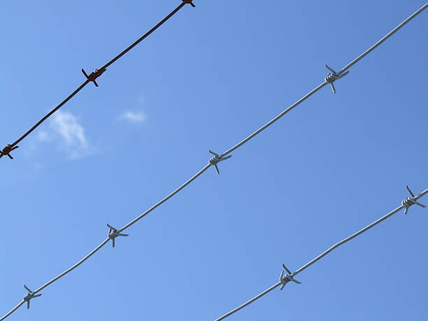 look at the sky through barbed wire - belkindesign stock pictures, royalty-free photos & images