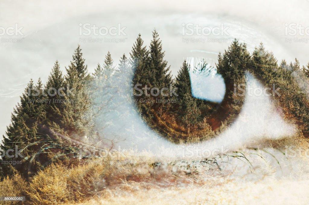 Analizar las profundidades de la naturaleza - foto de stock