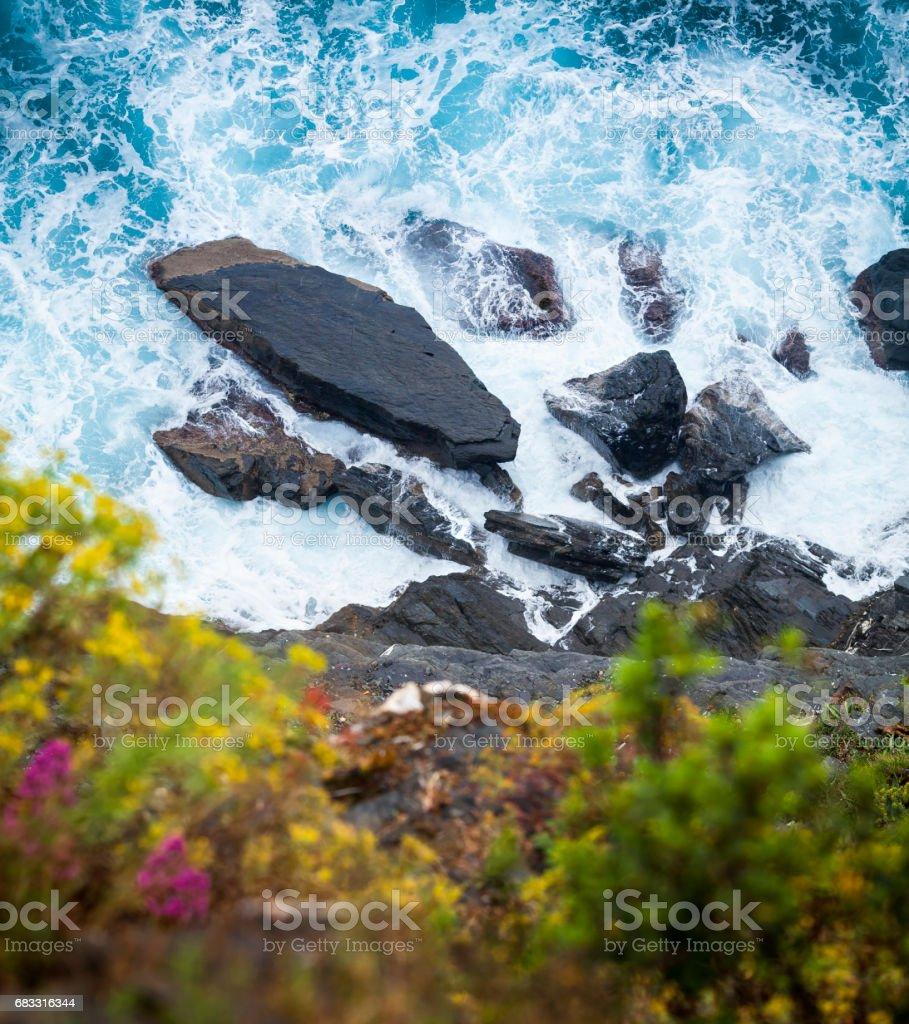 Aan de Ligurische golven neerkijken royalty free stockfoto