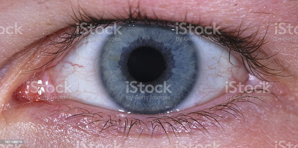 Look in my eye royalty-free stock photo