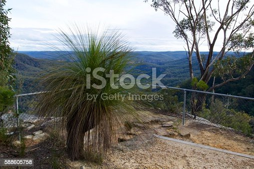 View of a classic look out in the Australian bush with gum tree, grass tree and fence in the fore ground and national park in the back ground.