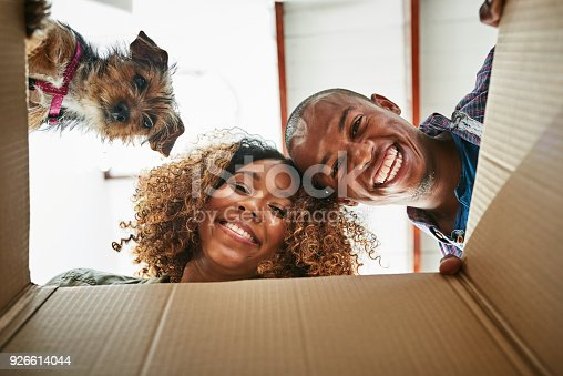 Low angle portrait of a cheerful couple and their dog looking into a box together to see whats inside