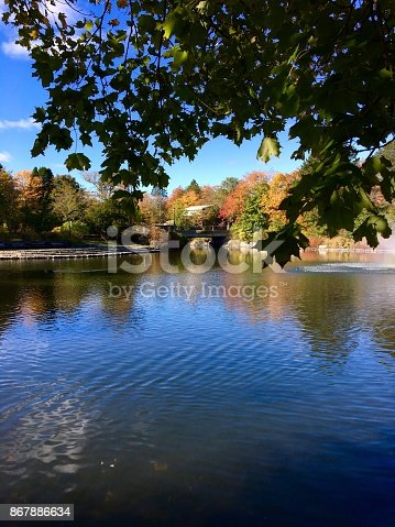 Looking across the pond in Bowring Park, St. John's, Newfoundland, at the bridge, and the trees in fall colours on the shore, and reflected in the water. Lots of pond in foreground, blue sky.