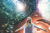Looking at aquarium