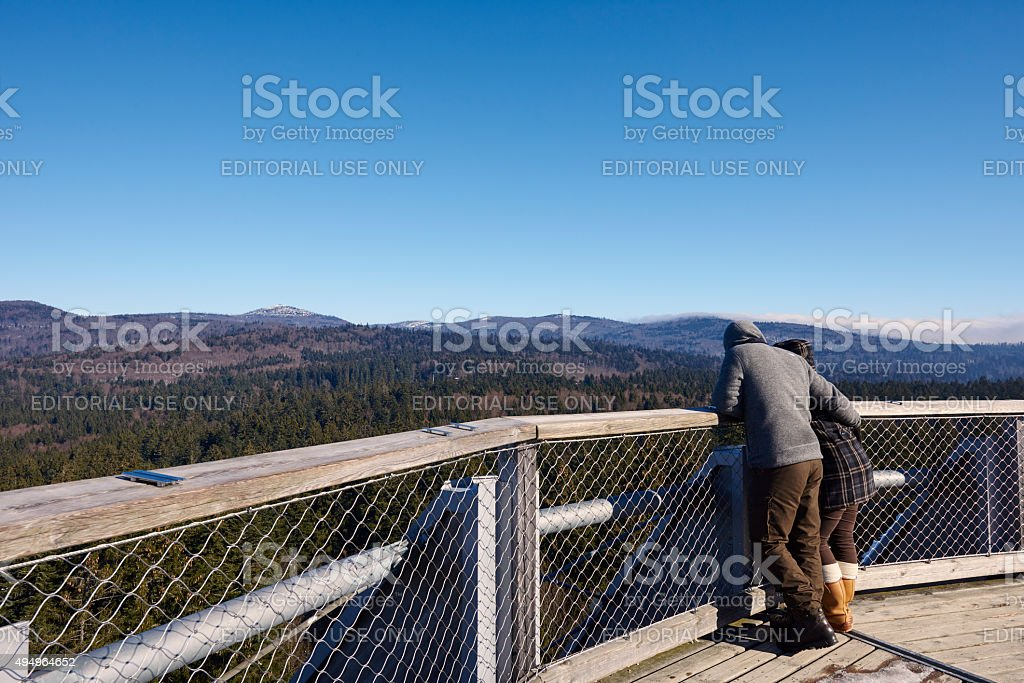 Looking at Bavarian Forest National Park stock photo