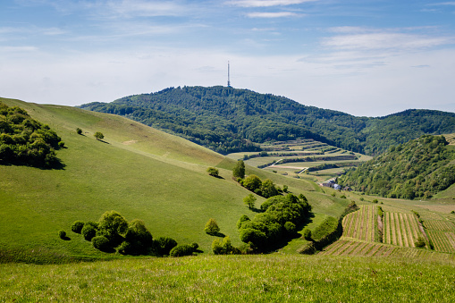 Looking at the Kaiserstuhl on top of the Badberg, Germany. perfect place to do some hiking and picnicking.
