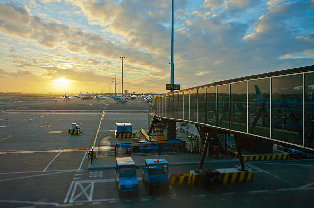looking at the morning sun from airport gate - schiphol stockfoto's en -beelden