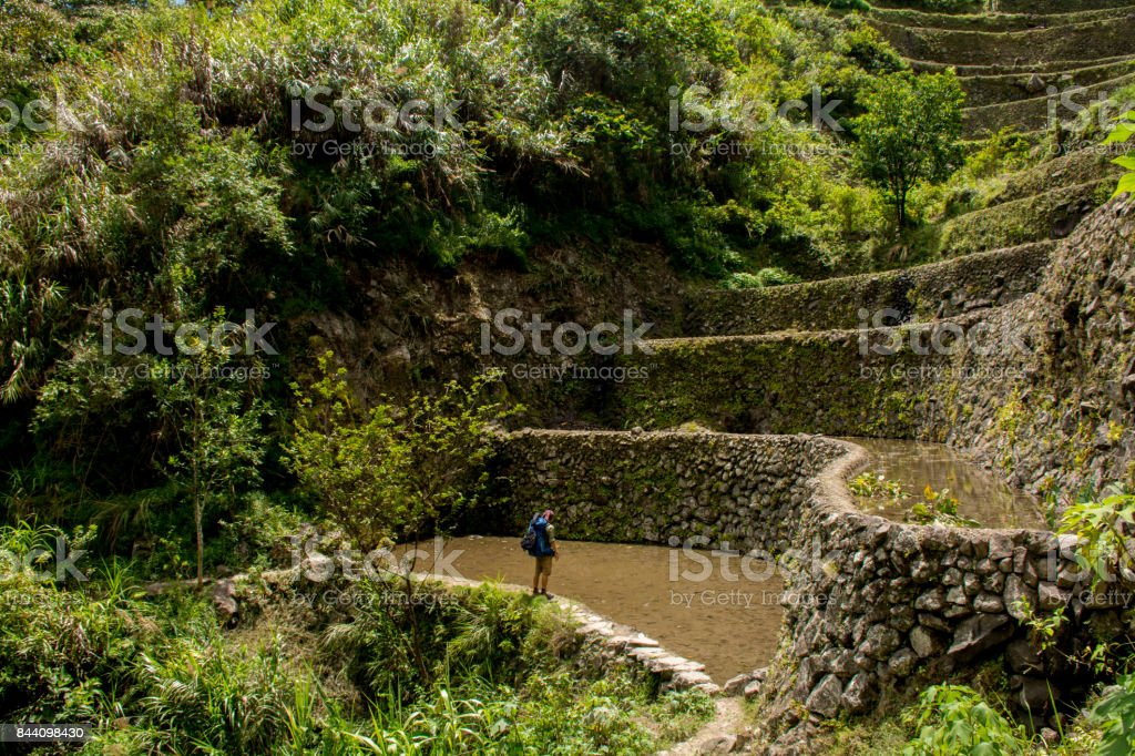 Looking at the rice terraces, The Rice terraces of the village of Batad, Unesco world heritage site, Philippines, Asia stock photo