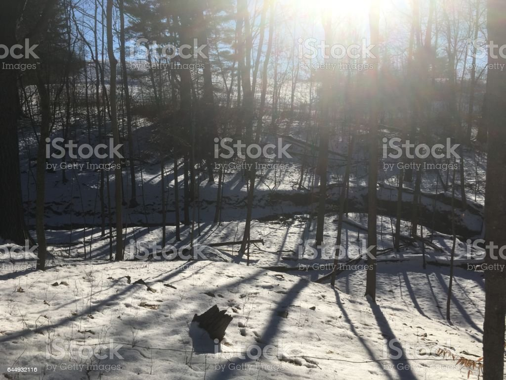 Looking at the sun through trees, long shadows cast on the snow.  Hiking on Poet's Walk trail in Red Hook, NY. Lens flare. Sun shines through deciduous trees. Small river running through forrest. stock photo