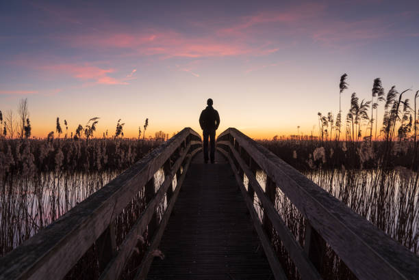 Looking at the sunset Man alone standing on a small bridge, looking at the sunset in a nature reserve. Drenthe, Holland. footbridge stock pictures, royalty-free photos & images