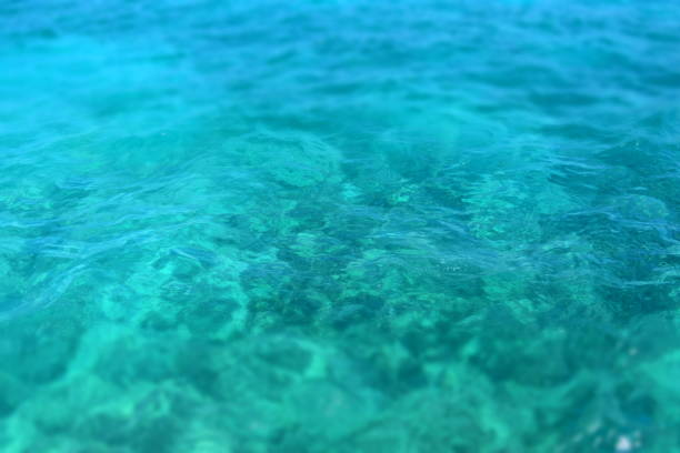 looking down at clear water - turquoise colored stock photos and pictures