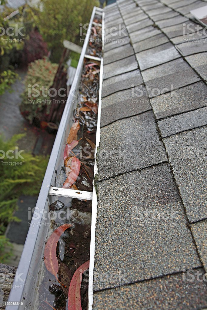 Looking Down Clogged Gutter stock photo