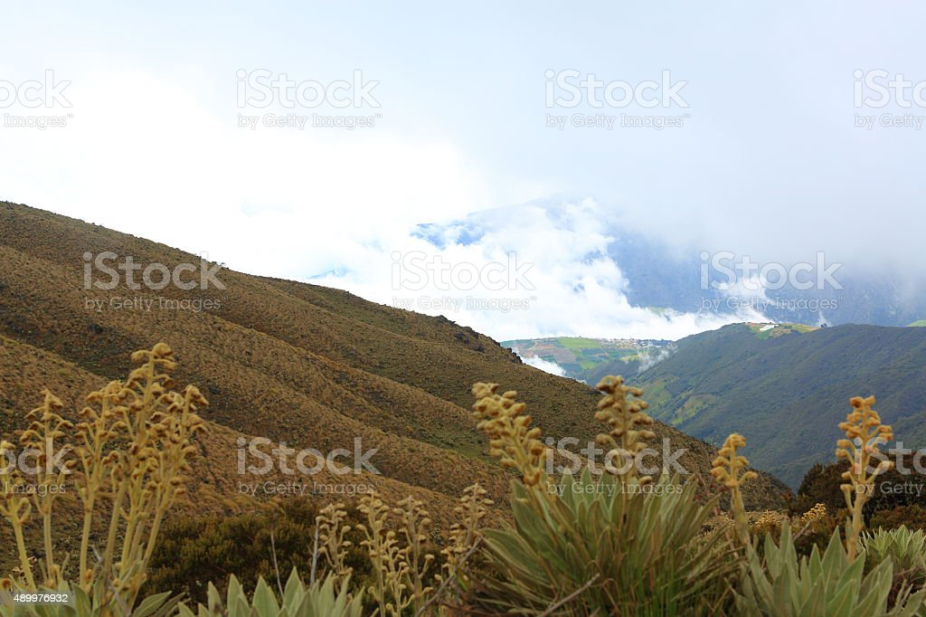Looking Down from High Mountains Moorlands in Tachira stock photo