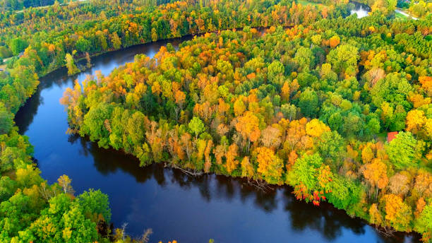 Looking down on forest of breathtaking Autumn colors with winding river Looking down on forest of breathtaking Autumn colors with winding river, aerial flyover. wisconsin stock pictures, royalty-free photos & images