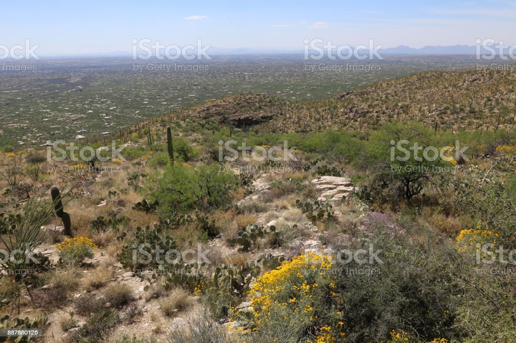 Looking Down on Tucson stock photo