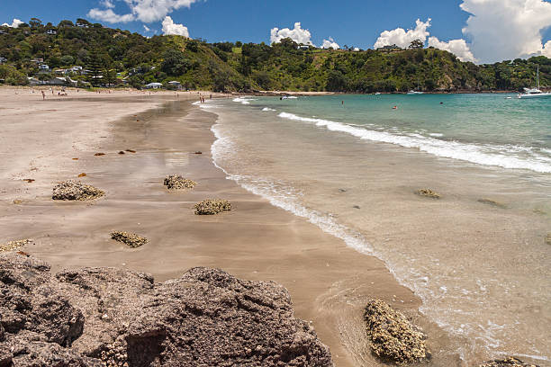 Blick auf Palm beach auf Waiheke Island New Zealand – Foto