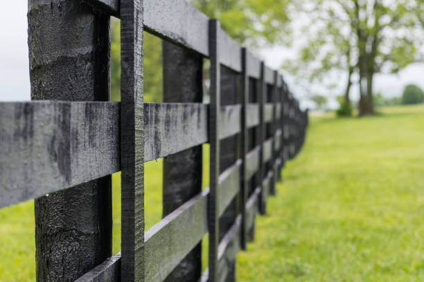looking down the line of black horse fence - fence stock photos and pictures