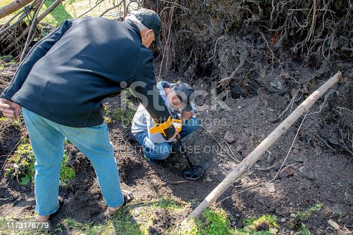Saint John, NB, Canada - September 8, 2019: Men use a metal detector to search for artifacts in the hole left when a tree fell during Hurricane Dorian in King's Square. Motion blur on detector coil.