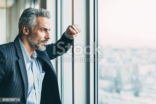 istock Looking for solutions 626259714