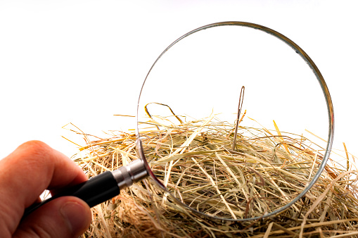 """The idiom or the figure of speech """"look for a needle in a haystack"""" is used to describe something elusive in a large space or a sisyphean task. Magnifying glass on the needle is isolated on white"""