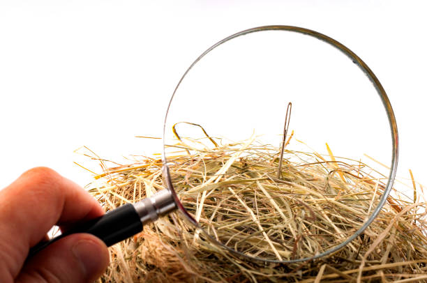 """Looking for the needle in the haystack The idiom or the figure of speech """"look for a needle in a haystack"""" is used to describe something elusive in a large space or a sisyphean task. Magnifying glass on the needle is isolated on white sewing needle stock pictures, royalty-free photos & images"""