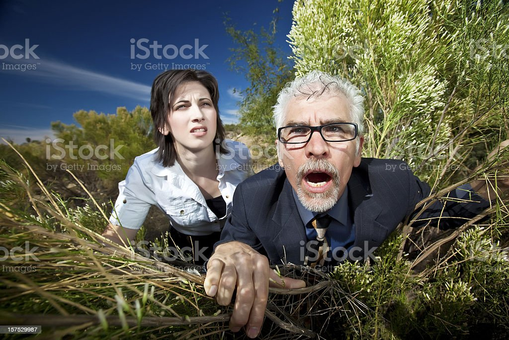 Looking for work royalty-free stock photo
