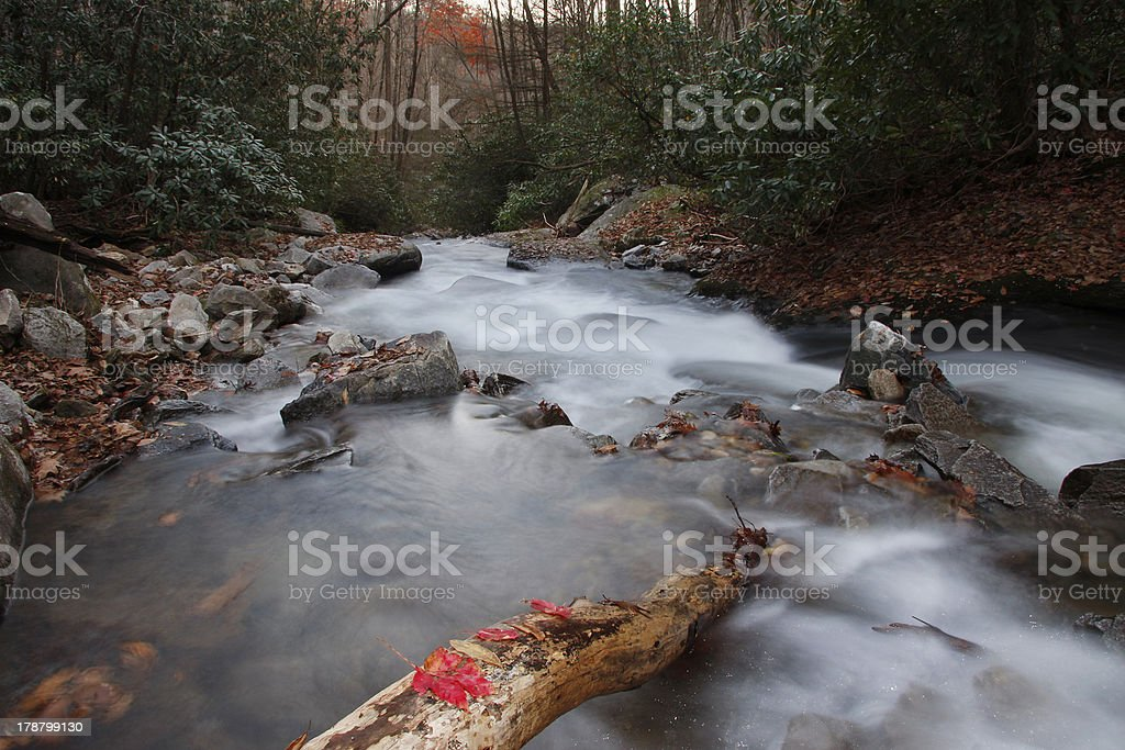 Looking Glass Creek in Pisgah National Forest royalty-free stock photo