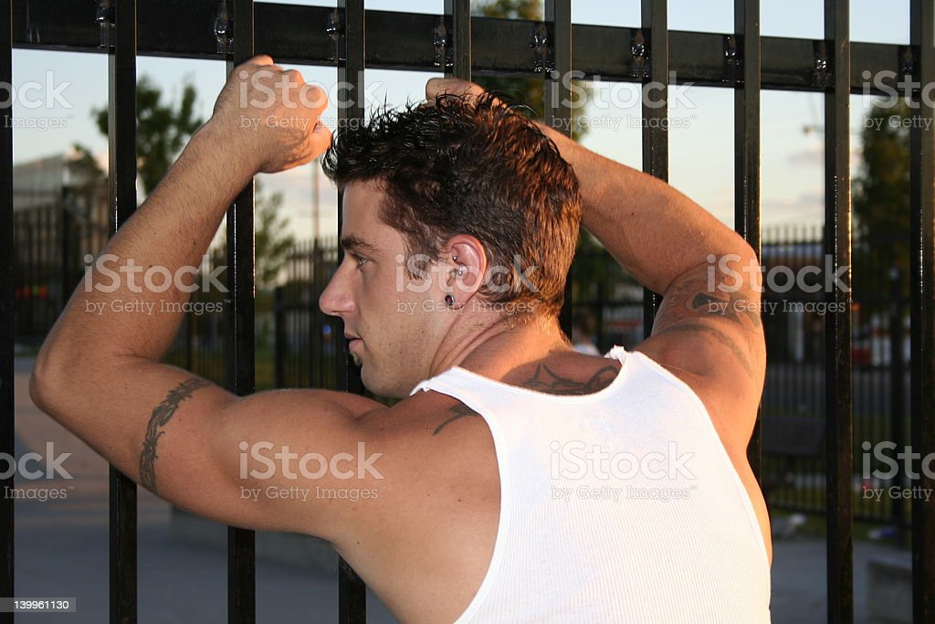 Looking in from the outside royalty-free stock photo
